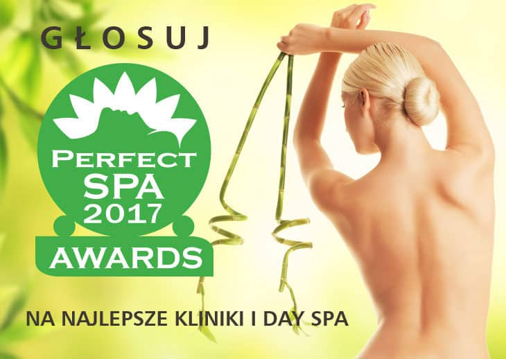 baner Perfect SPA Awards 2017 DAYSPA